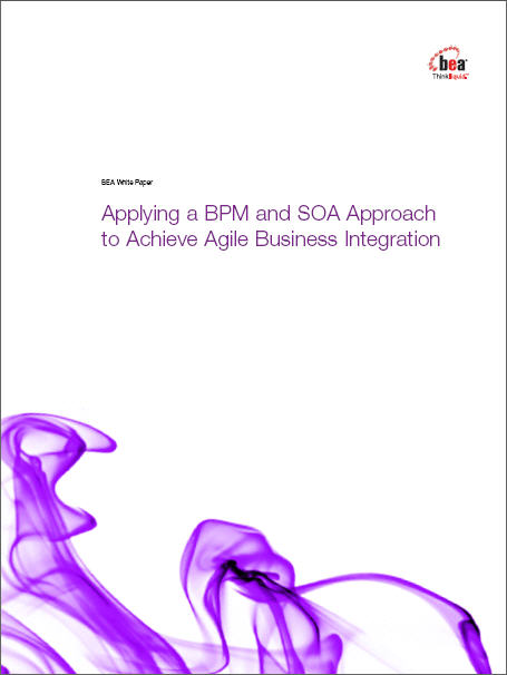 Applying a BPM and SOA Approach