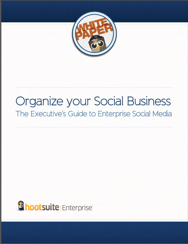 Organise Your Social Business – The Executives Guide to Enterprise Social Media