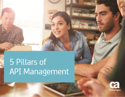 5 Pillars of  API Management