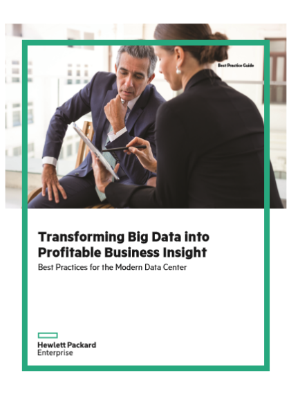 Transforming Big Data into Profitable Business Insight