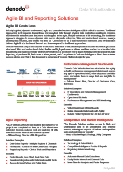 Agile BI and Reporting Solutions