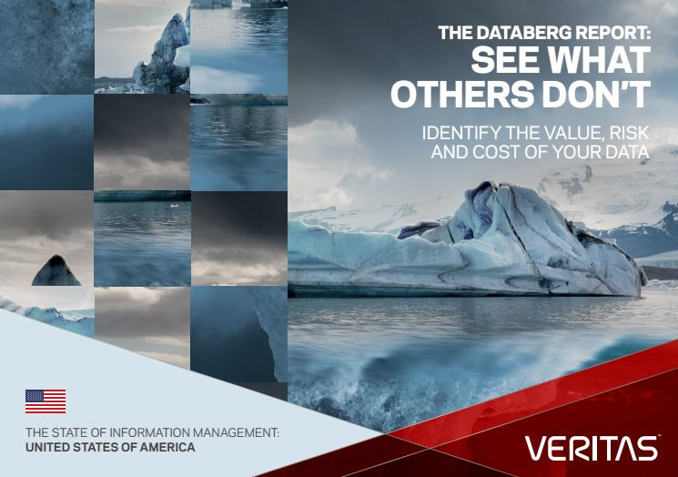 Databerg Report Executive Summary