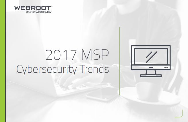 2017 MSP  Cybersecurity Trends