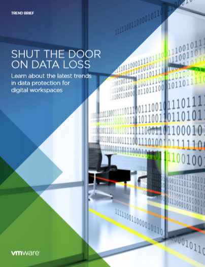 SHUT THE DOOR ON DATA LOSS