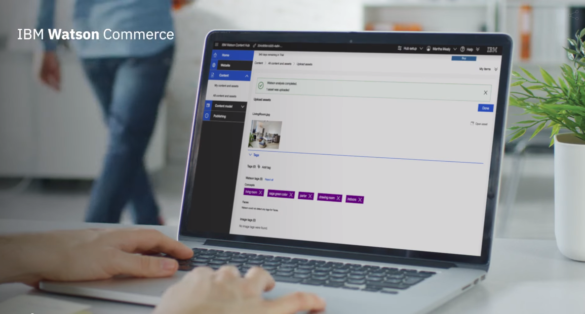 IBM Digital Commerce Demo Videos