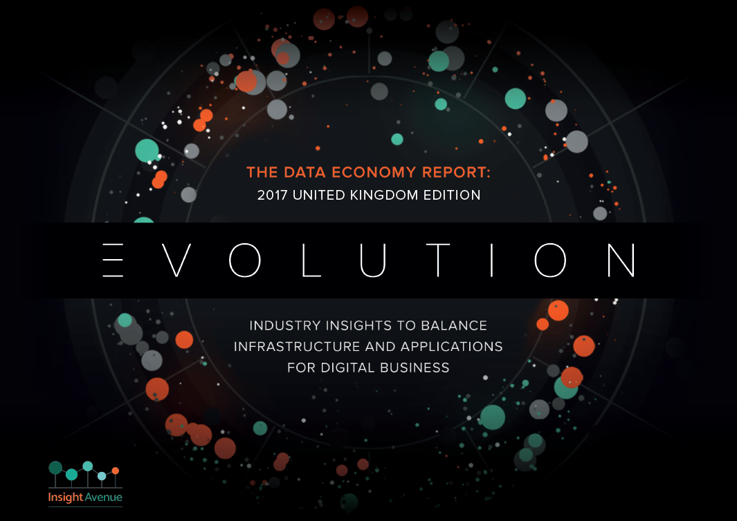 The data economy report: Evolution 2017