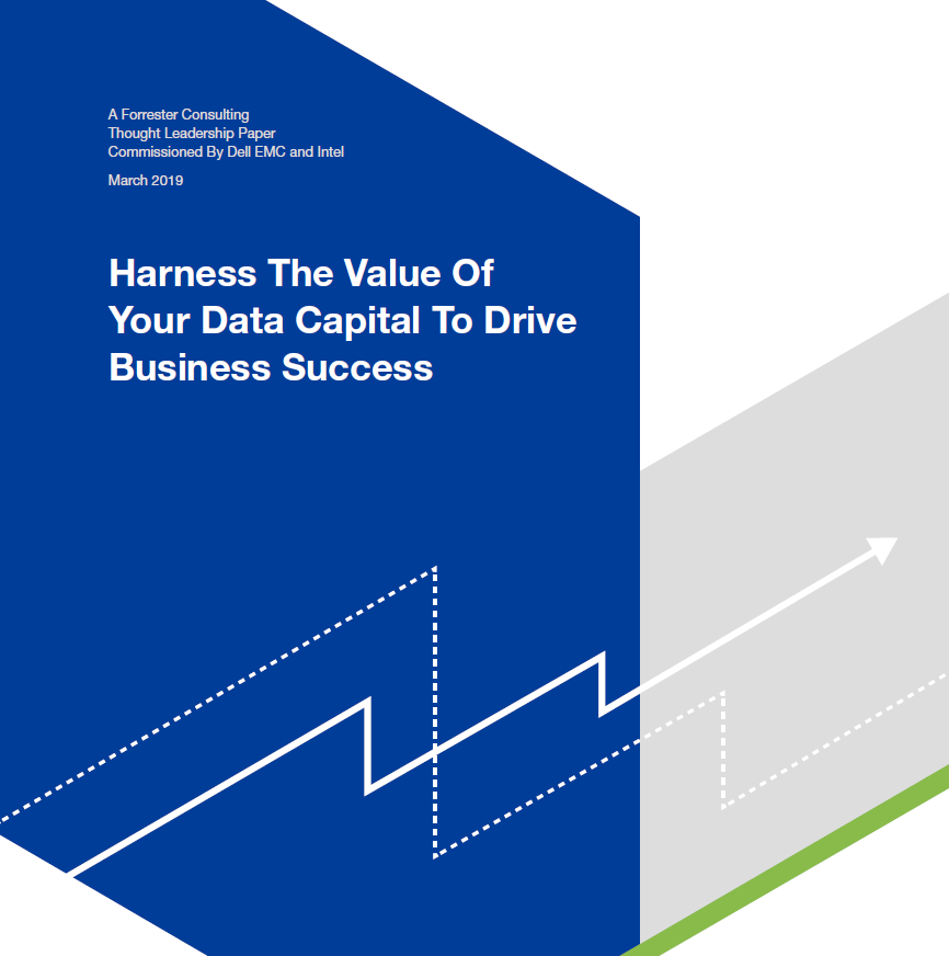 Harness the value of your data capital to drive business success